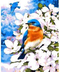 Картина по номерам Птичка на яблоневой ветке 40 х 50 см (AS0052)