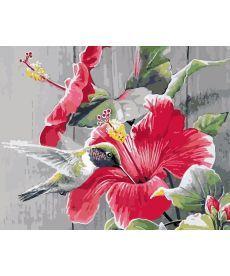 Картина по номерам Колибри с цветком 40 х 50 см (AS0179)