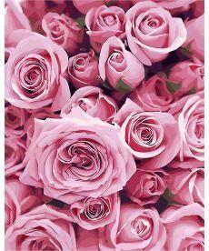 Картина по номерам Нежные розы 40 х 50 см (AS0248)