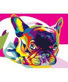 Картина по номерам Радужный французский бульдог 40 х 50 см (BK-GEX5379)