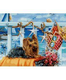 Картина по номерам Йоркширский терьер на пляже 40 х 50 см (BK-GX21473)