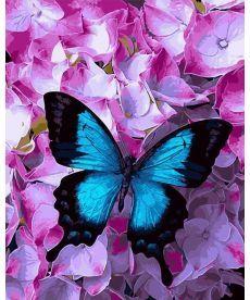 Картина по номерам Голубой махаон 40 х 50 см (BK-GX21627)
