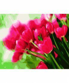 Картина по номерам Весенние тюльпаны 40 х 50 см (BK-GX9246)