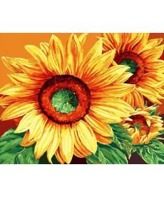 Картина по номерам Роскошные подсолнухи 40 х 50 см (BK-GX9572)