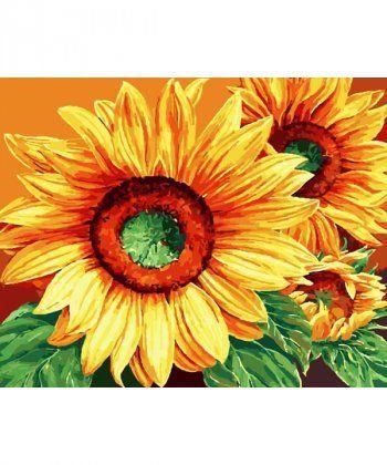 Картина по номерам Роскошные подсолнухи 40 х 50 см (BK-GX9572)  - Фото 1