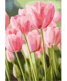 Картина по номерам Весенние тюльпаны 35 х 50 см (KH2069)