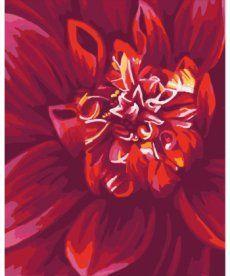 Картина по номерам Алый георгин 40 х 50 см (KH2092)