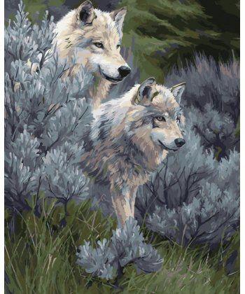 Картина по номерам Волчья пара 40 х 50 см (KH2435)  - Фото 1