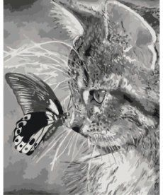 Картина по номерам Котенок и бабочка 40 х 50 см (KH2499)