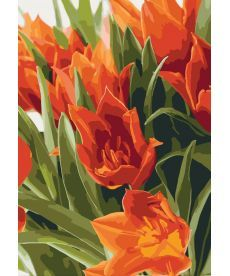 Картина по номерам Яркие тюльпаны 35 х 50 см (KH3012)