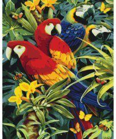 Картина по номерам Красочные ара 40 х 50 см (KH4028)