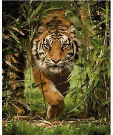 Картина по номерам Тигр на охоте 40 х 50 см (KH4043)