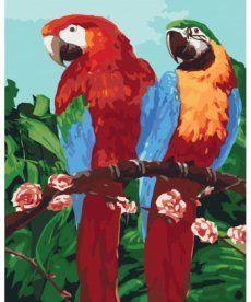 Картина по номерам Королевские попугаи 40 х 50 см (KH4051)