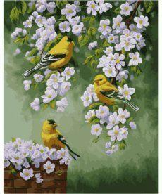 Картина по номерам Зяблики на яблоне 40 х 50 см (KHO2427)