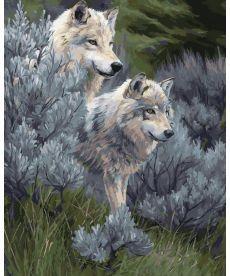 Картина по номерам Волчья пара 40 х 50 см (KHO2435)