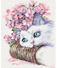 Картина по номерам Белый котик 40 х 50 см (KHO2494)