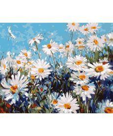 Картина по номерам Ромашковая поляна 40 х 50 см (KHO2918)