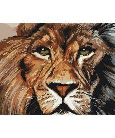 Картина по номерам Львиный взгляд 40 х 50 см (KHO4024)