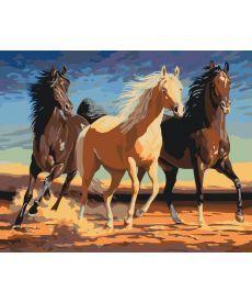 Картина по номерам Прекрасные лошади 40 х 50 см (KHO4029)