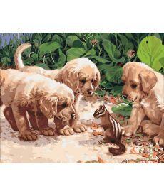 Картина по номерам Щенки и бурундук 40 х 50 см (KHO4055)