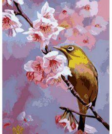 Картина по номерам Колибри на яблоневой ветке 40 х 50 см (MR-Q703)