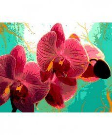 Картина по номерам Тропическая орхидея 40 х 50 см (MR-Q766)