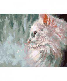 Картина по номерам Белый кот 40 х 50 см (MR-Q785)