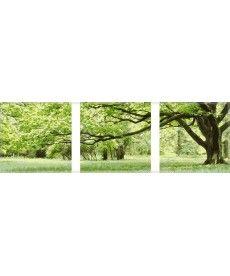 Картина по номерам Триптих. Зеленое дерево Триптих 50 х 150 см (MS14057)