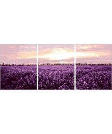 Картина по номерам Триптих. Лавандовое поле Триптих 50 х 150 см (MS14059)