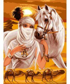 Картина по номерам Принцесса пустыни 30 х 40 см (VK009)