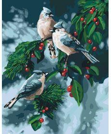 Картина по номерам Зимние птички 40 х 50 см (KHO4081)