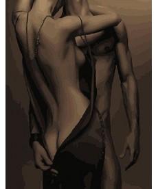Картина по номерам Эротика 40 х 50 см (BK-GX24601)