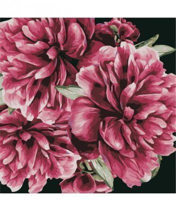 Картина по номерам Цветы для тебя 40 х 40 см (AS0503)