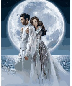 Картина по номерам Под лунным светом 40 х 50 см (KHO4552)