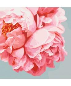 Картина по номерам Нежно-розовые пионы 40 х 40 см (KHO3035)
