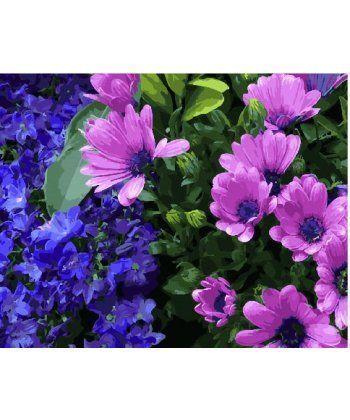 Картина по номерам Сиреневые хризантемы 40 х 50 см (BK-GX25350)  - Фото 1