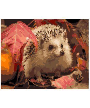 Картина по номерам Ёж в листьях 40 х 50 см (BK-GX25615)  - Фото 1