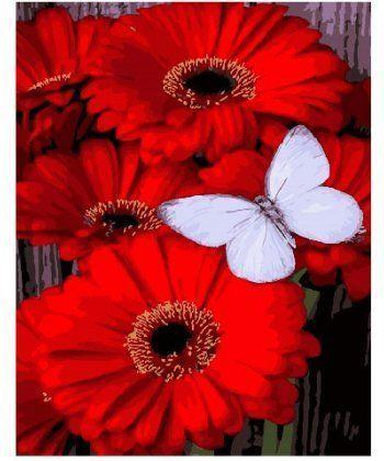 Картина по номерам Бабочка на герберах 40 х 50 см (BK-GX25787)  - Фото 1