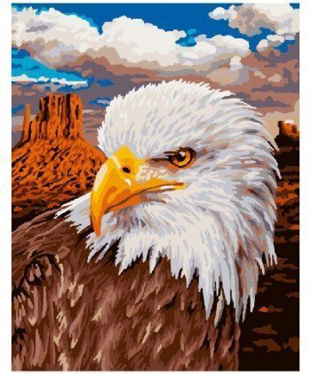 Картина по номерам Орел 40 х 50 см (BK-GX3928)  - Фото 1