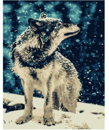 Картина по номерам Одинокий волк 40 х 50 см (BK-GX7483)  - Фото 1
