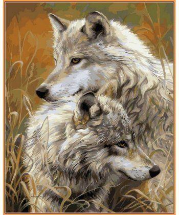 Картина по номерам Степные волки (в раме) 40 х 50 см (NB034R)  - Фото 1