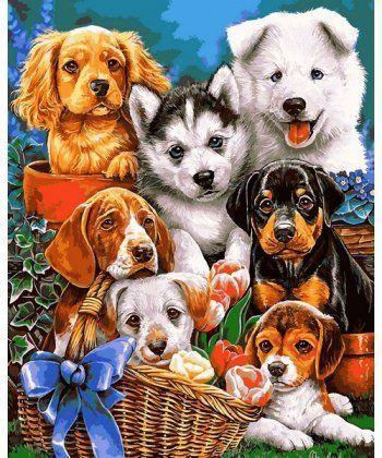 Картина по номерам Озорные щенки 40 х 50 см (VP1104)  - Фото 1