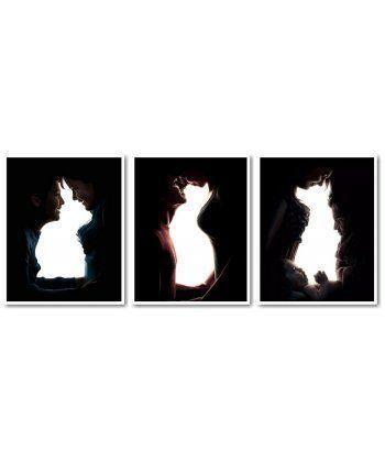 Картина по номерам Триптих Домашние любимцы Триптих 50 х 120 см (VPT039)  - Фото 1