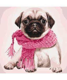 Картина по номерам Мопс в шарфике 40 х 40 см (KHO4107)