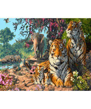 Картина по номерам Индийские тигры 40 х 50 см (BK-GX5723)  - Фото 1
