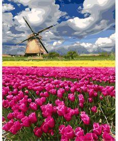 Картина по номерам Мельница в поле тюльпанов 40 х 50 см (BK-GX27313)