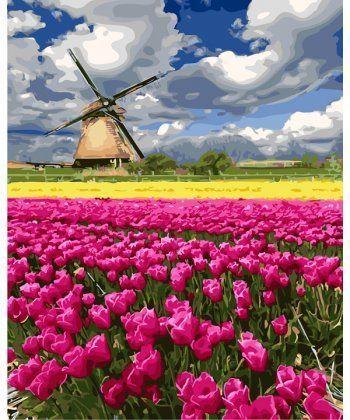 Картина по номерам Мельница в поле тюльпанов 40 х 50 см (BK-GX27313)  - Фото 1