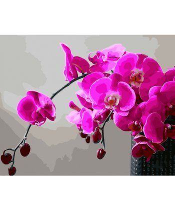 Картина по номерам Пурпурная орхидея 40 х 50 см (BK-GX28314)  - Фото 1
