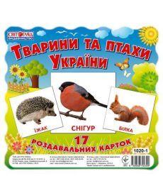 Картки міні.Тварини та птахи України