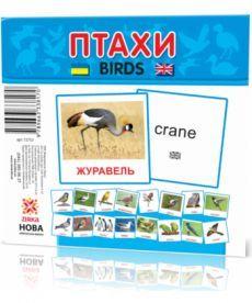 Картки міні Птахи (110х110 мм)